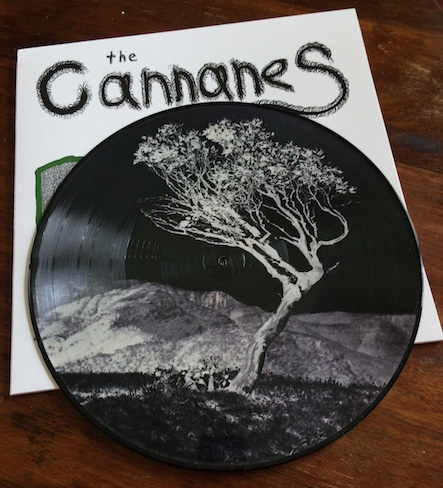 A Love Affair With Nature Picture Disc